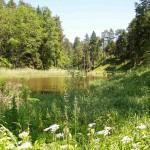 Agroturystyka – Kielce
