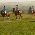 Obozy młodzieżowe – Kielce