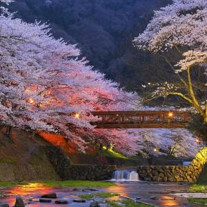 wycieczka-do-japonii-5